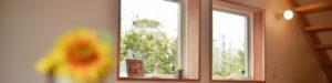 こもれびの庭_窓からの緑